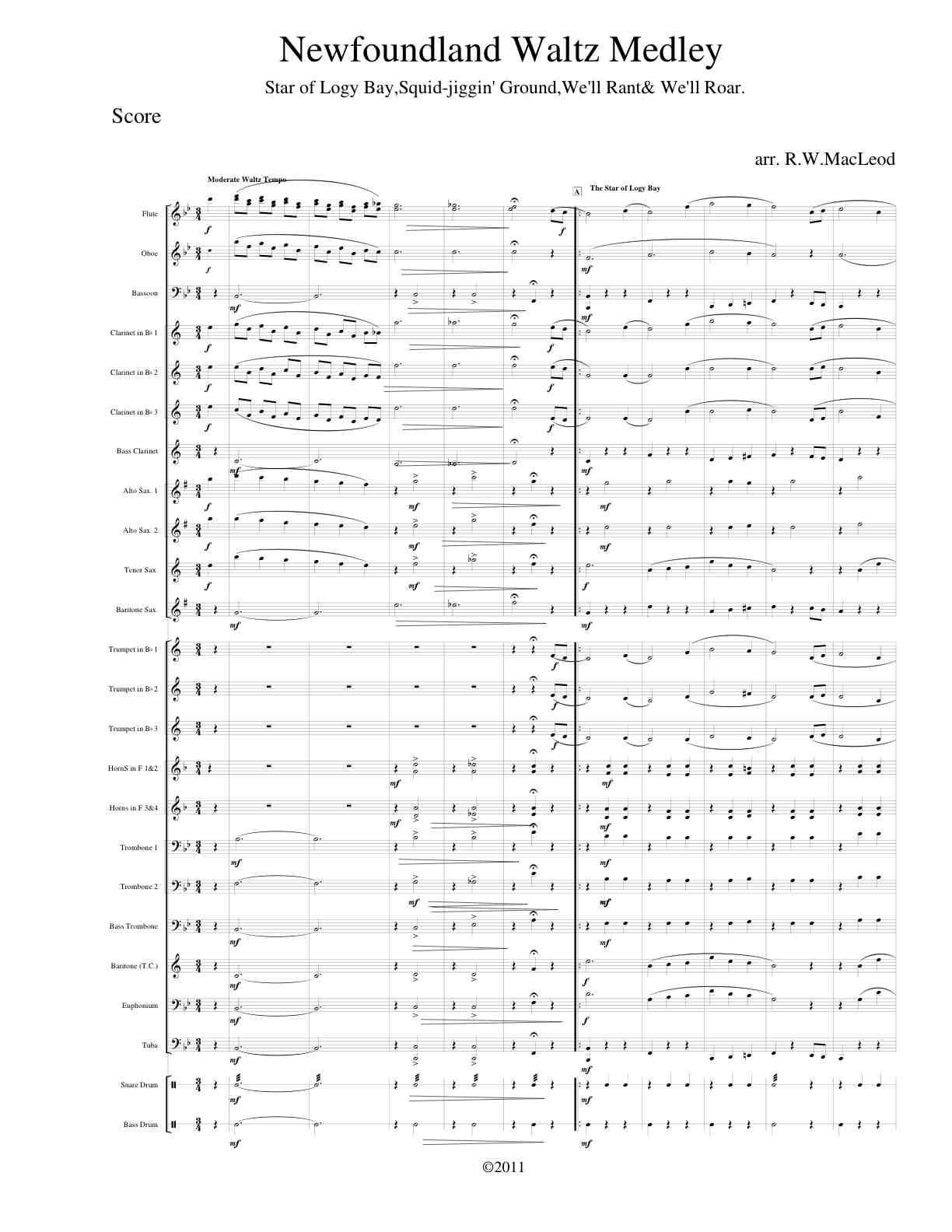Nfld Waltz medley cover